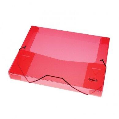 Dėklas - dėžutė dokumentams CENTRUM, PP, A4, 40 mm