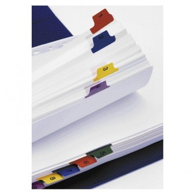 Kartoniniai spalvoti skiriamieji lapai ESSELTE, 1-20, A4 2