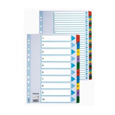 Kartoniniai spalvoti skiriamieji lapai ESSELTE, 1-20, A4