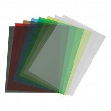 Plastikinis įrišimo viršelis, A4, 200 mic, 100 vnt., skaidrūs