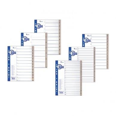 Plastikiniai skiriamieji lapai 1-31, A4 MAXI