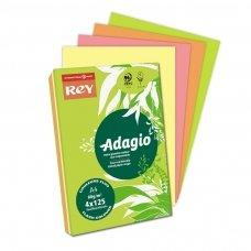 Spalvoto popieriaus rinkinys REY ADAGIO A4,80 g/m2,500 lapų, 4 ryškios spalvos po 125 lapų