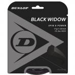 Stygos raketei DUNLOP Black Widow